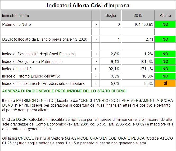 DSCR indicatori allerta crisi impresa